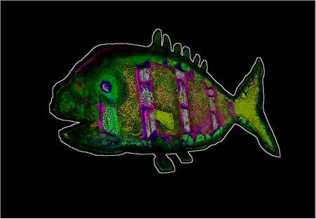 Иллюстрация символ рыбы