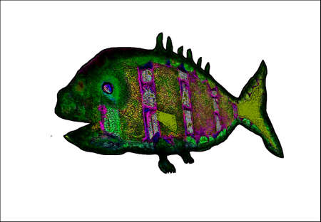 illustration of fish symbol Illustration