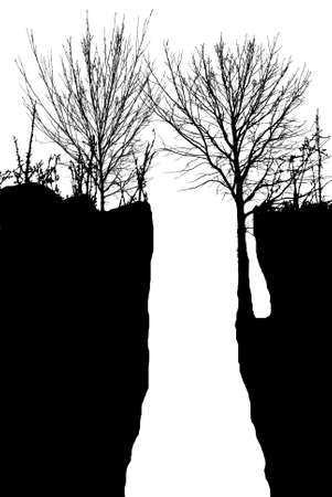 weeping willow tree: Vector silhouette of the tree over the cliff