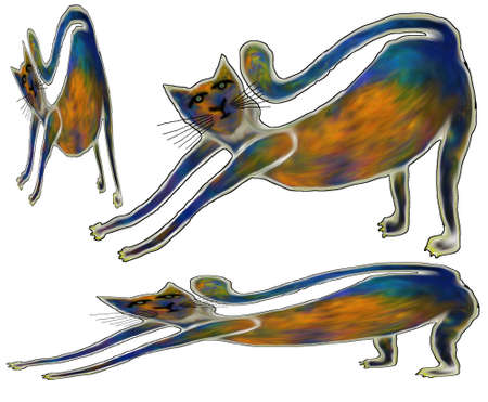 Illustration - type cat for your design