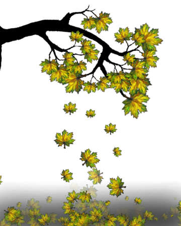 Autumn falling maple leaves background.