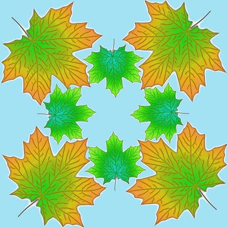 Vector Autumn maple leaves Illustration
