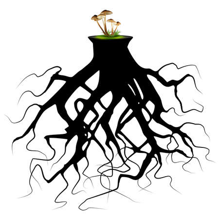 Tree roots silhouette with mushrooms Vector