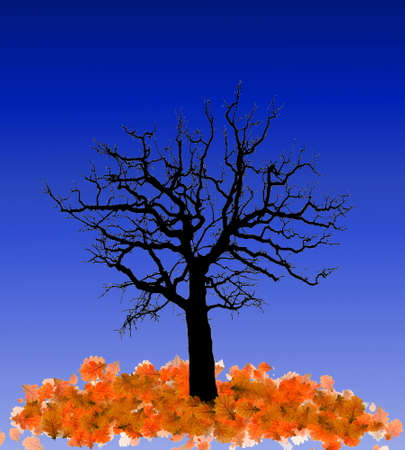 fallen tree: Silhouette of a tree with fallen leaves at night