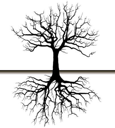 Vector - Tree silhouette