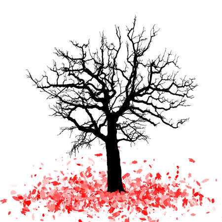 fallen leaves: Silhouette of a tree with fallen leaves