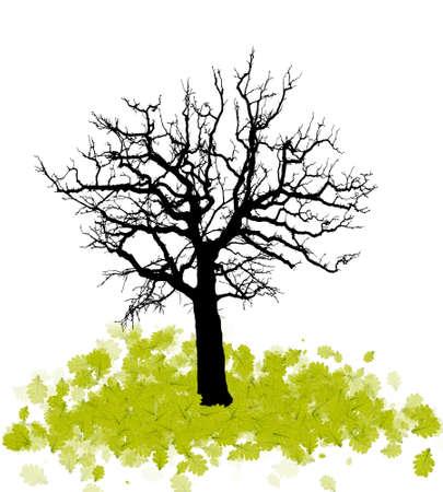 fallen tree: Silhouette of a tree with fallen leaves