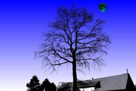 Иллюстрация силуэт дерева ночью