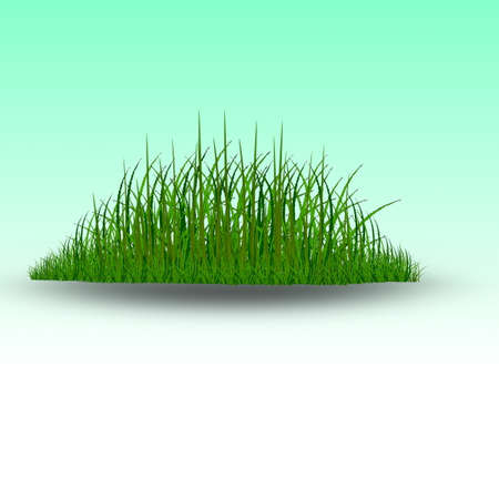 Зеленая трава вектор