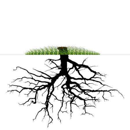 Vector-Tree roots silhouette