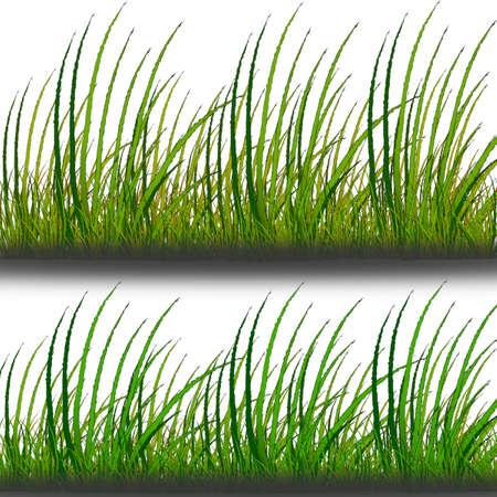mow: Vector - vector grass set Illustration