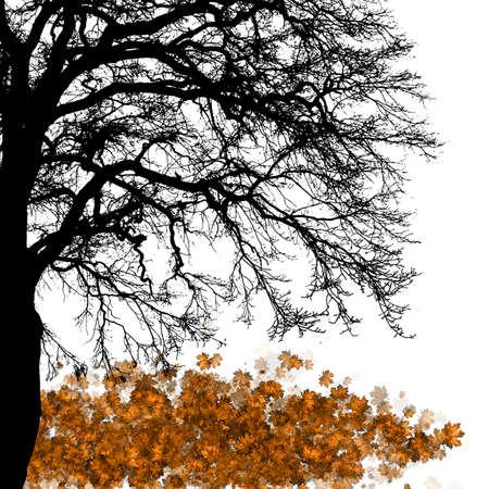 Vector - Maple tree, autumn leaf fall