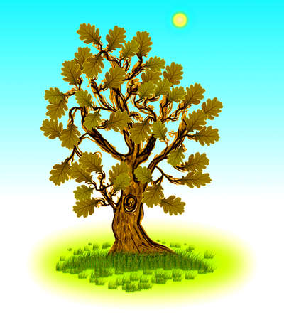 Дерево вектор дуба