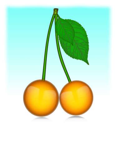 Vector - cherries