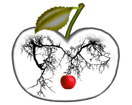 garden of eden: Apple on a branch