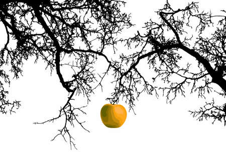 Last Apple Ilustrace
