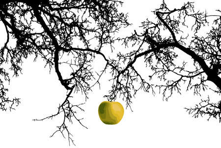 the tempter: Apple on a branch