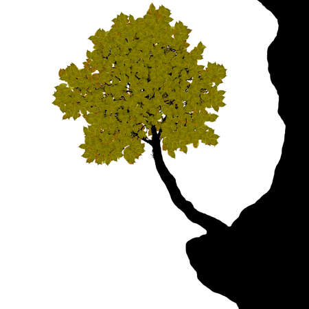tree on the cliff - vector