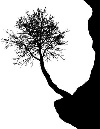 drupe: Silhouette of tree on the cliff - vector Illustration