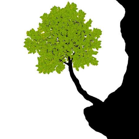 Green tree on the cliff - vector Illustration