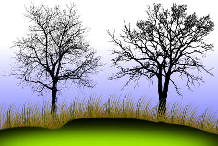 genealogical: Silhouette of tree with green grass