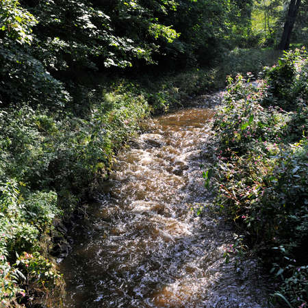 torrent: River with a torrent