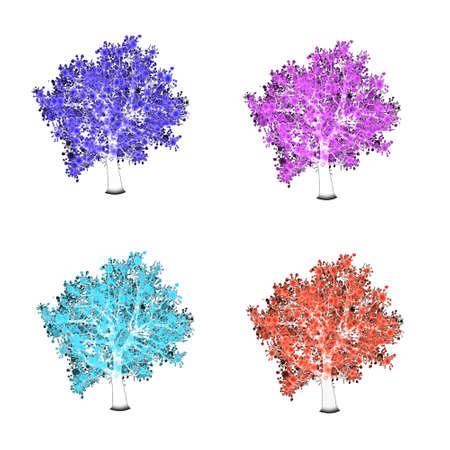 four season: Four season trees. Spring, summer, autumn, winter
