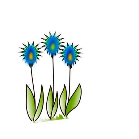 dandelions: Dandelions. Illustration.