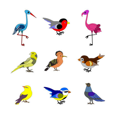 Birds. Vector collection of European birds, such as  dove, sparrow, flamingo, hoopoe, blue tit, white stork, bullfinch, canary, oriole in trendy flat style. Isolated on white. Stock Vector - 90471127