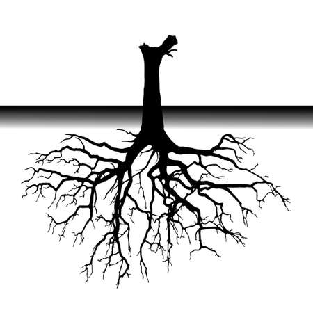 Roots under the soil illustration