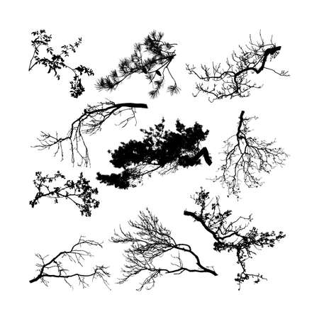 Set of natural tree branches silhouettes (vector illustration) eps10 Stock Illustratie