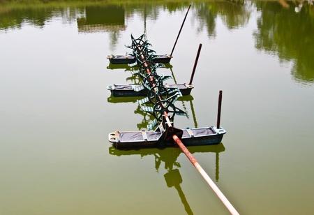 rearing of fish: shirmp farm Stock Photo