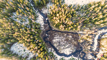 Drone view on wild nature rural forest with lake and snow melting in spring