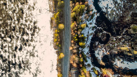 Drone view of spring rural road in yellow pine forest with melting ice lake with snow.