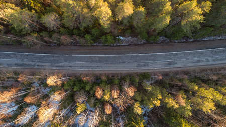 Drone view of spring rural road in yellow pine forest with snow in rural Russia