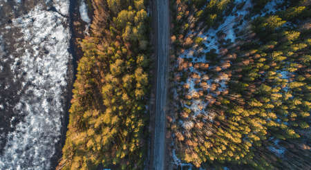 Aerial view of spring rural road in yellow pine forest with melting ice lake Zdjęcie Seryjne