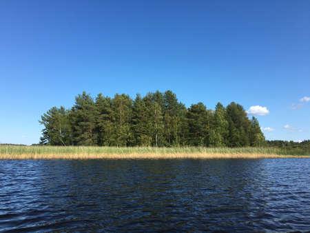 Rural lake landscape with reed- clear sky, dark water and little island Zdjęcie Seryjne
