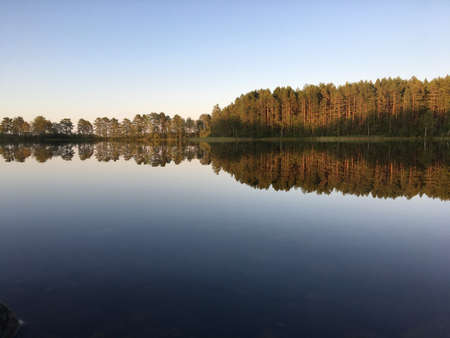 Perfect reflections on the lake in summer evening with warm colors