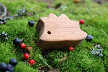 Fairy-tale wooden hedgehog toy on the wild moss and some berries