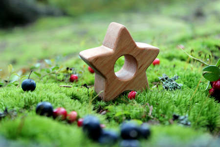 Fairy-tale wooden star toy on the wild moss and some berries in the forest.