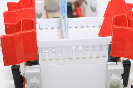 electrophoresis: Polyacrylamide gel electrophoresis for separate biological macromolecules test mobility is a function of the length Stock Photo