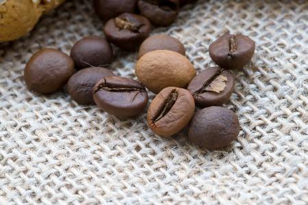 bens: John Coffey bens isolated bug he batskground. flavored coffee