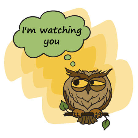 Cute angry owl sitting on branch. Im watching you poster. Cartoon. Illustration with owl Çizim