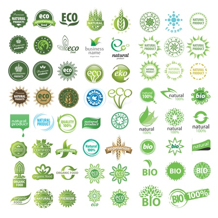 collection of vector eco sign Vector