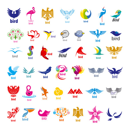 biggest collection of vector icons birds  Vector