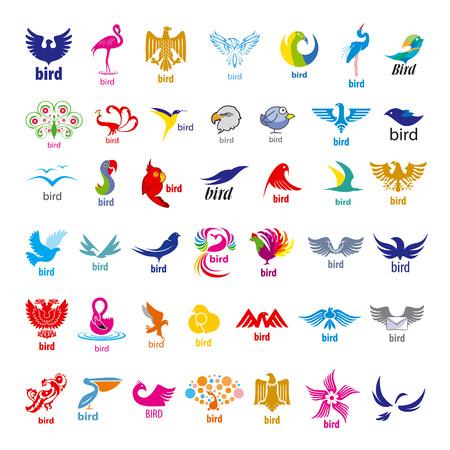 aguila volando: mayor colección de vectores iconos de los pájaros