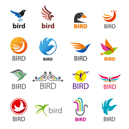 business flying: big set of vector icons birds