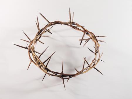 corona de espinas: Corona de espinas con picos afilados