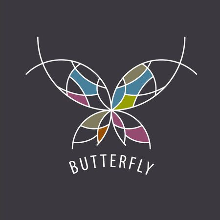 inserts: vector  schematic butterfly with color inserts Illustration
