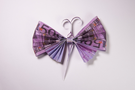 billets euros: Origami butterfly made out of euro bills